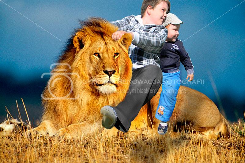 Fotomanipulacja - jazda na lwie