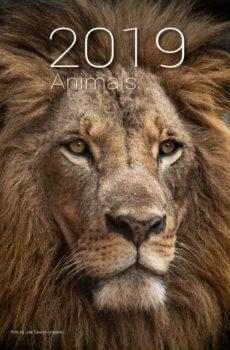 kalendarz A4 2019 zwierzęta